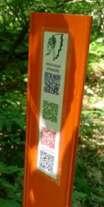 Owasippe Digital Trails